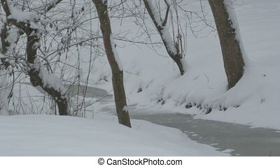 Snowing on Tiny River - View of snowfall in the forest.