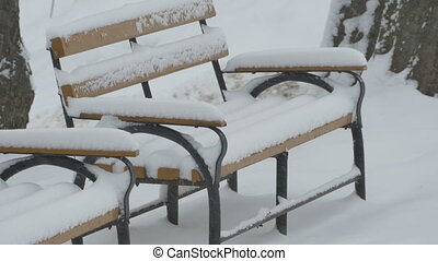 Snowing on Bench in Park - Snowfall in the park, despositing...