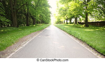 Mixed race African American young adult teenager girl running jogging on a tree lined country road
