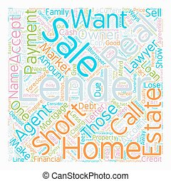 Why Would a Lender Do a Short Sale text background wordcloud concept