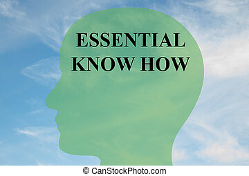 Essential Know How concept