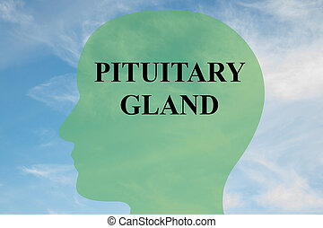 Pituitary Gland concept - Render illustration of 'PITUITARY...