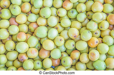 Jujube, Indian jujube, monkey apple, green balls pile was...