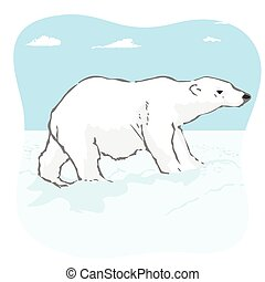 big polar bear in arctic tundra