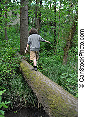 Walking on a fallen tree in a forest - A child walking...