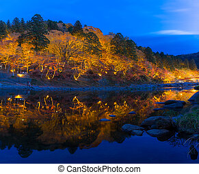 Korankei Forest autumn park Nagoya - korankei Forest autumn...