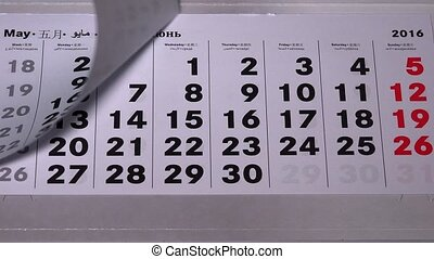 Female hand tear off calendar paper pages of past 2016 year....