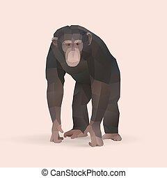 chimpanzee, polygonal geometric animal illustration, vector