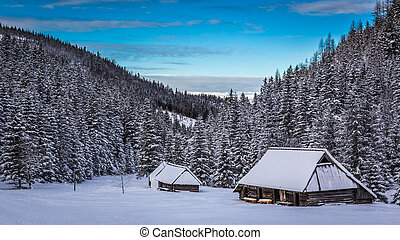 Sunset in winter valley in Tatras Mountains, Poland