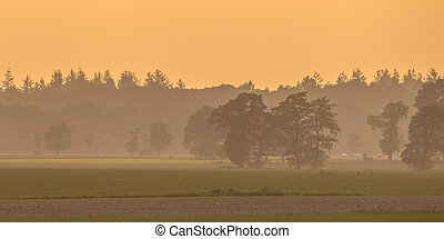 Peaceful agricultural landscape with trees and meadows at...