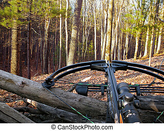 hunting crossbow in woods - crossbow resting on tree trunk...