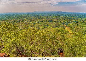 Sigiriya, Sri Lanka: aerial view of jungle