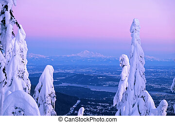 View of Mount Baker from Cypress Mountain in winter. -...