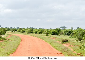 Red earthen track in East Tsavo Park, Kenya