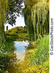 River Scenery