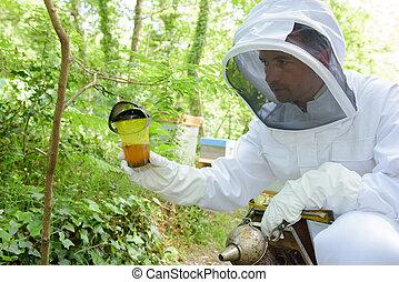 Mirar, apicultor, tarro