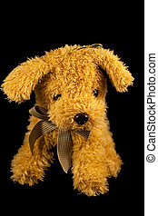 Soft toy dog isolated on black background
