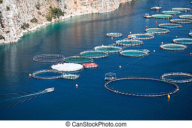 Fish farm in the sea - aquaculture