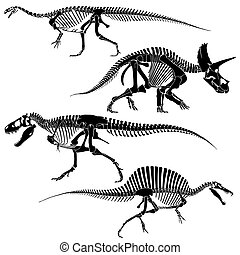 Ancient fossil dinosaur skeletons, lizard animals bones...
