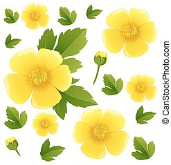 Seamless background with yellow buttercup flowers...