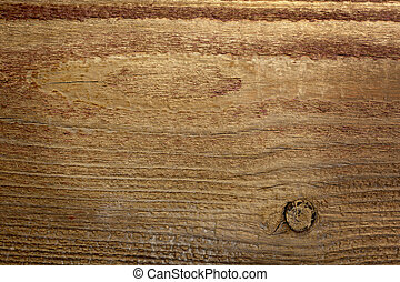 wooden background nature