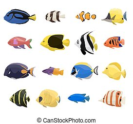Coral reef fish set with 16 different type of fishes