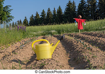 funny scarecrow - On arable field is a funny dressed...