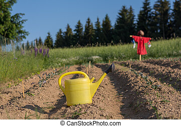 Watering can and in the background Scarecrow - yellow...
