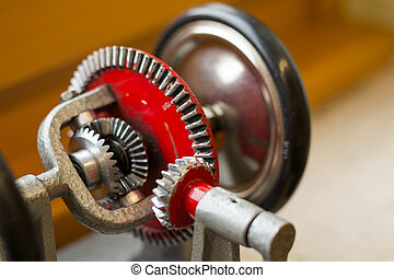 Model of a differential gear - Differential gear - Model...