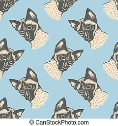 Siam cat vector illustration - Seamless vector pattern with...