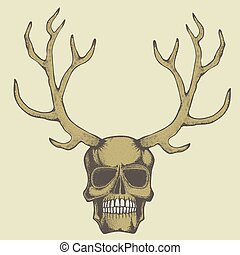 skull illustration - Vector skull with deer horn...