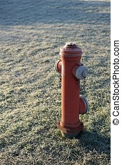 Hydrant on a meadow in Magdeburg