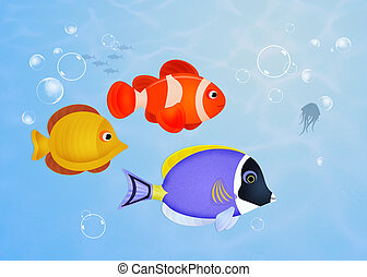 fish on the reef - illustration of fish on the reef