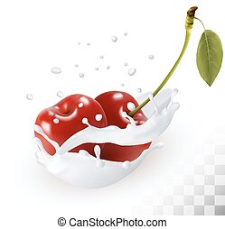 Couple of cherries in a milk splash on a transparent background. Vector.