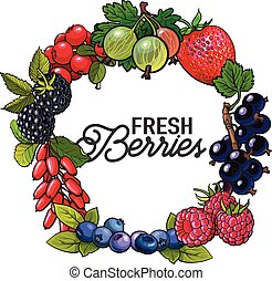 Round frame of garden berries with place for text inside,...