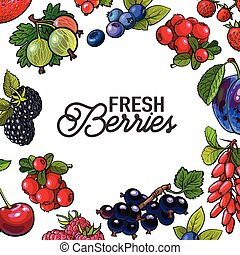 Frame of garden berries with round place for text inside -...