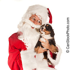 Santa with dog - Santa claus bringing a 6 weeks old puppy...