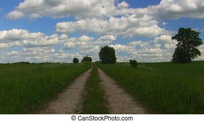 summer meadow, blue sky, timelapse