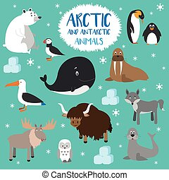 Vector set Arctic and Antarctic animals. Flat style...
