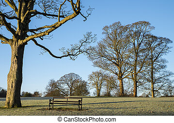 Verulamium Park in St. Albans - A Winter-time view of the...