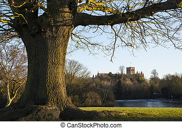 St. Albans Cathedral Viewed from Verulamium Park - The...