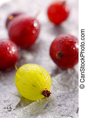 Yellow and red gooseberries - Close-up of yellow and red...