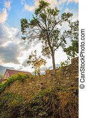 beautiful landscape with a house with stone fence and tree...