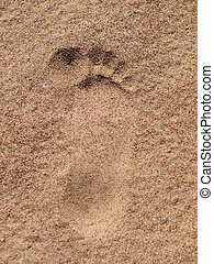 Footstep - The footstep on the sand