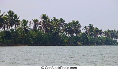 View of Wide River between Palm Banks Distant Boats in...