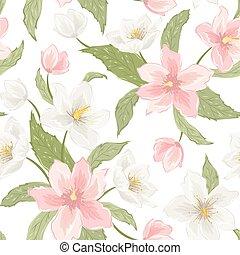 Magnolia sakura hellebore flowers pink white - Magnolia...