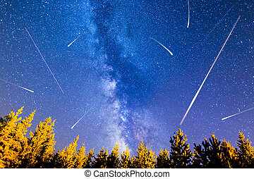 Falling stars pine trees Milky Way - A view of the stars of...