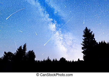 Falling stars pine trees silhouette Milky Way - A view of...