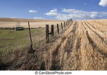 Fence in the field.