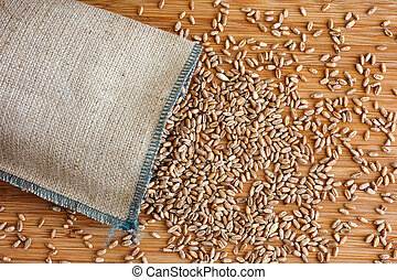Whole wheat grain kernels spilling out of burlap bag